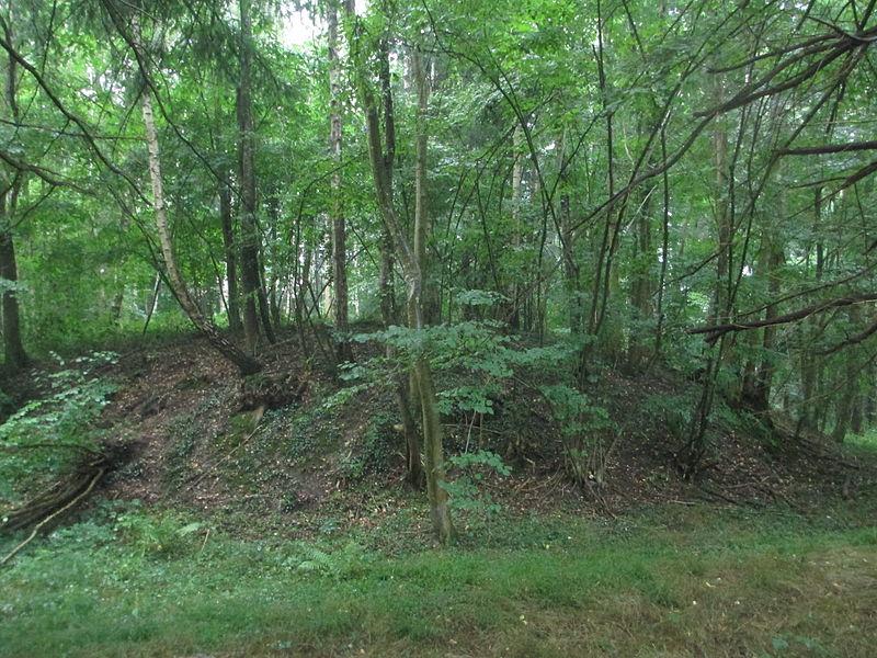 Photo du Monument Historique Motte féodale dite Garenne-de-la-Motte situé à Igé
