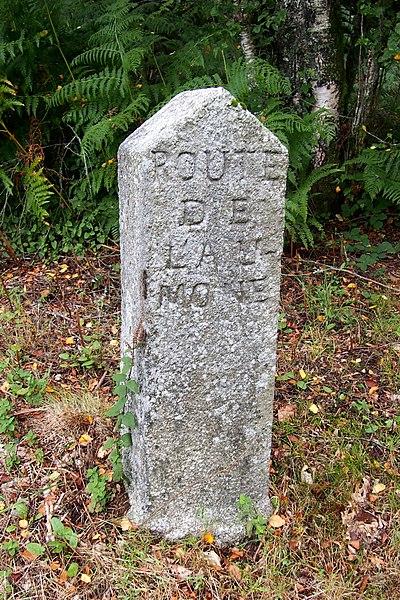 Photo du Monument Historique 80 bornes de la forêt d'Ecouves (également sur communes de Le Bouillon, La Chapelle-près-Sées, La Ferrière-Béchet, Fontenai-les-Louvets, Radon, Rouperroux, Saint-Didier-sous-Ecouves, Saint-Gervais-du-Perron, Saint-Nicolas-des-Bois, Tanville et Vingt-Hanap situé à La Lande-de-Goult