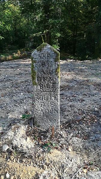 Photo du Monument Historique 80 bornes de la forêt d'Ecouves (également sur communes de Le Bouillon, La Chapelle-près-Sées, La Ferrière-Béchet, Fontenai-les-Louvets, La Lande-de-Goult, Rouperroux, Saint-Didier-sous-Ecouves, Saint-Gervais-du-Perron, Saint-Nicolas-des-Bois, Tanville et situé à Radon
