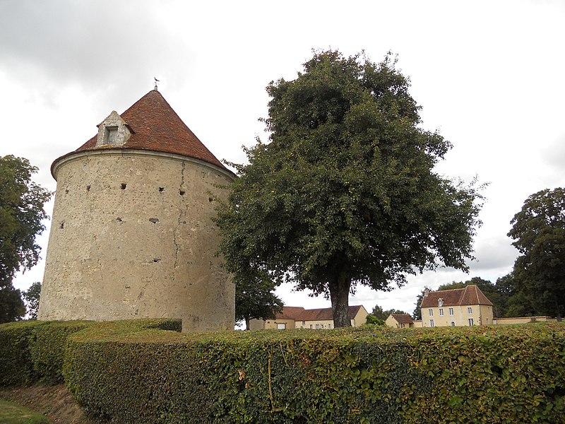 Photo du Monument Historique Motte féodale situé à Sainte-Céronne-lès-Mortagne