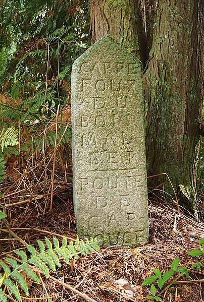 Photo du Monument Historique 80 bornes de la forêt d'Ecouves (également sur communes de Le Bouillon, La Chapelle-près-Sées, La Ferrière-Béchet, Fontenai-les-Louvets, La Lande-de-Goult, Radon, Rouperroux, Saint-Gervais-du-Perron, Saint-Nicolas-des-Bois, Tanville et Vingt-Hanaps) situé à Saint-Didier-sous-Ecouves