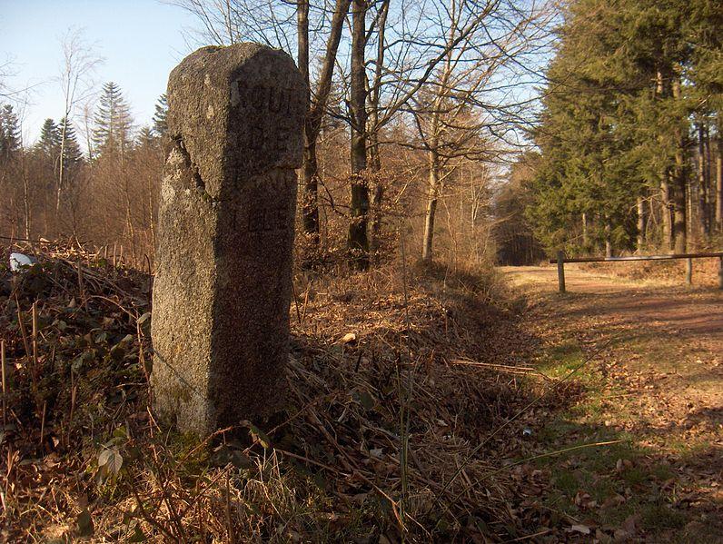 Photo du Monument Historique 80 bornes de la forêt d'Ecouves (également sur communes de Le Bouillon, La Chapelle-près-Sées, La Ferrière-Béchet, Fontenai-les-Louvets, La Lande-de-Goult, Radon, Rouperroux, Saint-Didier-sous-Ecouves, Saint-Nicolas-des-Bois, Tanville et Vingt-Hanaps) situé à Saint-Gervais-du-Perron
