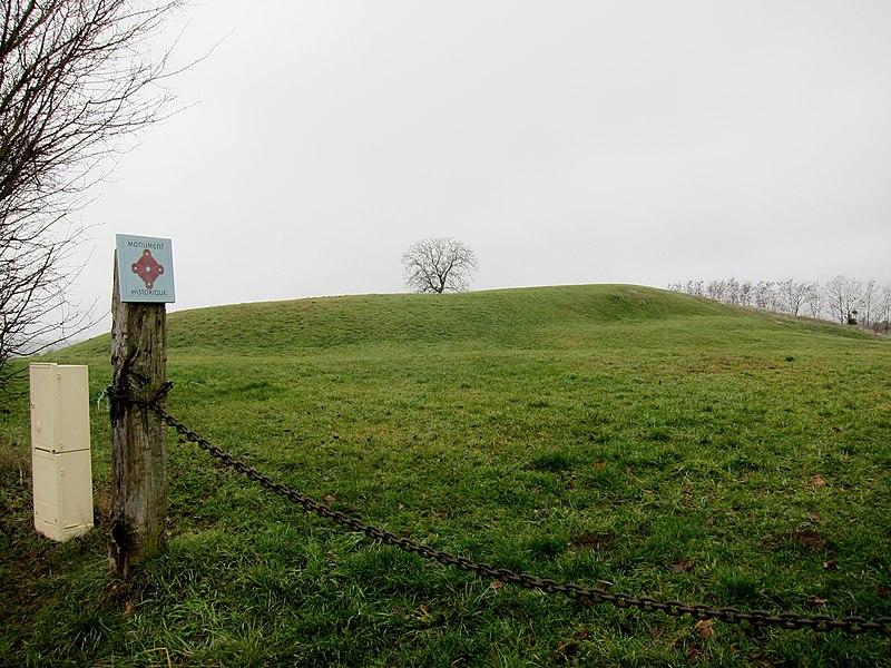 Photo du Monument Historique Motte castrale dite Le Chatellier situé à Rémalard