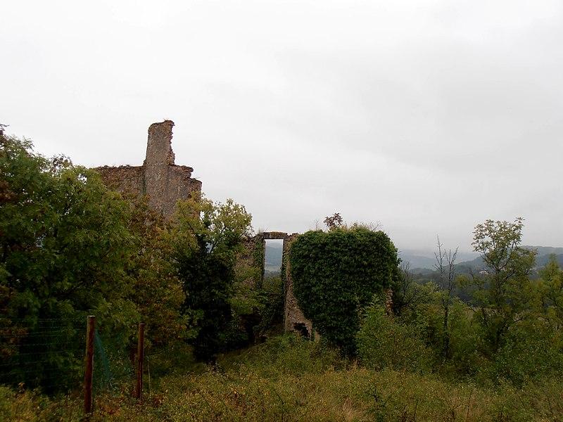 Photo du Monument Historique Château Cocu situé à Auzat-sur-Allier
