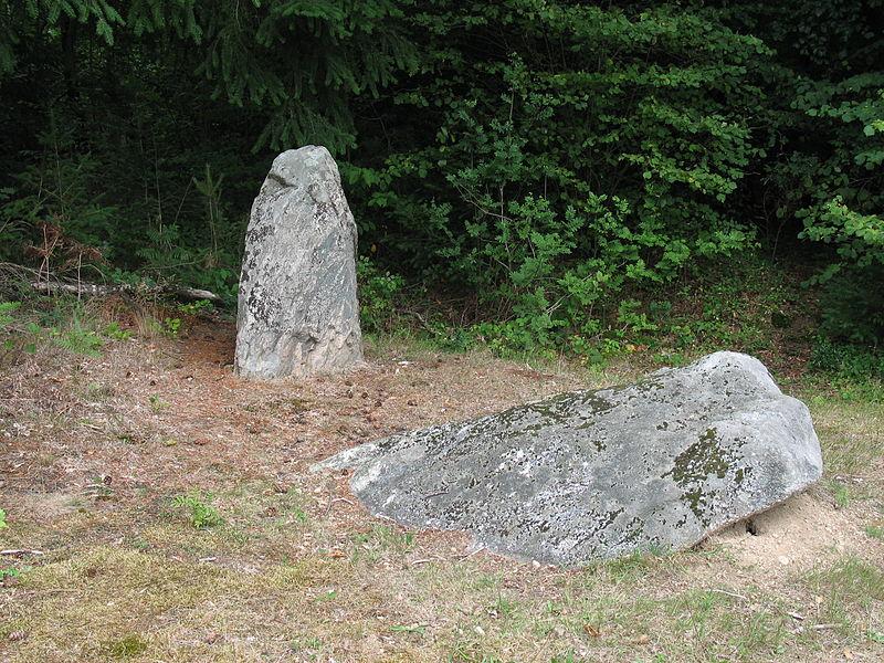 Photo du Monument Historique Deux mégalithes situé à Sainte-Christine