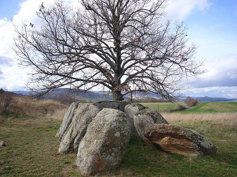 Photo du Monument Historique Dolmen dit l'Usteau du Loup ou La Grotte des Fées situé à Saint-Gervazy
