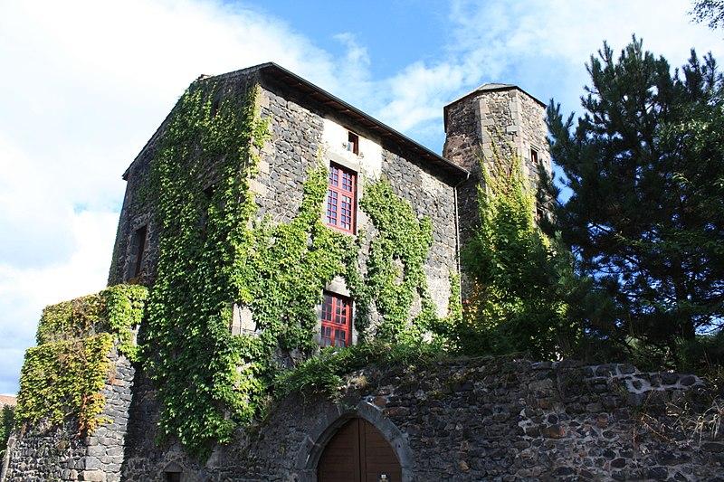 Photo du Monument Historique Château situé à Saurier