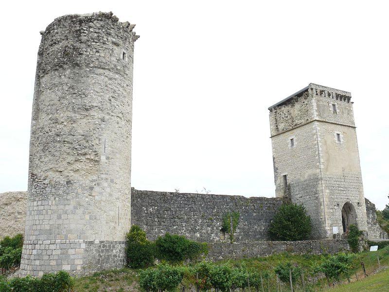 Photo du Monument Historique Château de Bellocq situé à Bellocq