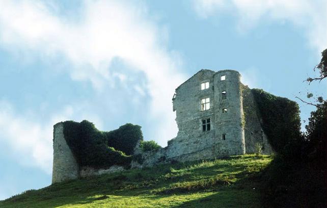 Photo du Monument Historique Château de Belzunce situé à Ayherre