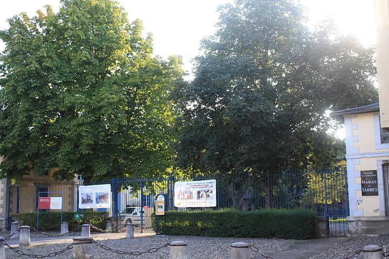 Photo du Monument Historique Haras nationaux situé à Tarbes