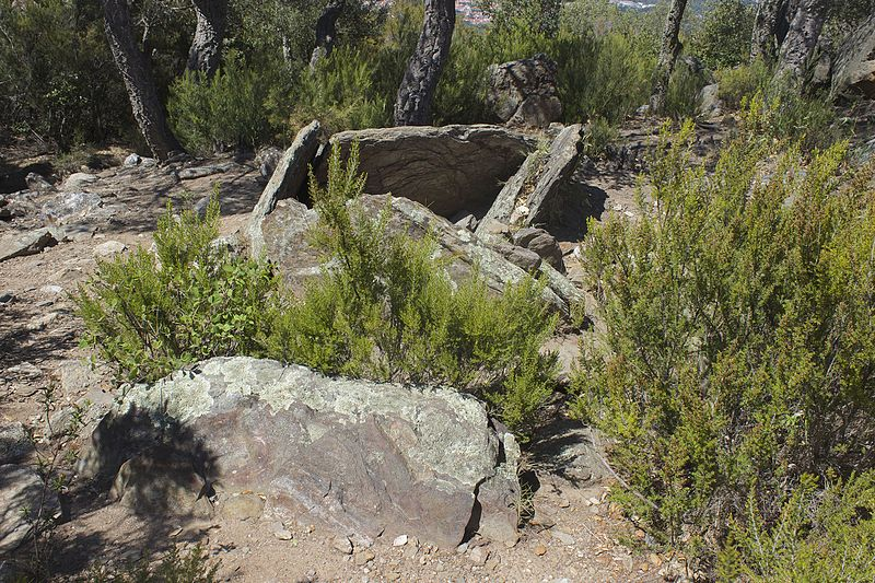 Photo du Monument Historique Dolmen dit Collets de Collioure situé à Argelès-sur-Mer