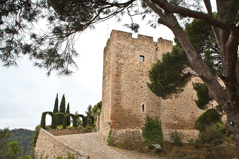 Photo du Monument Historique Château situé à Corbère