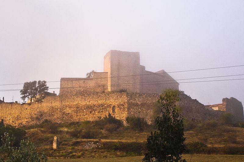 Photo du Monument Historique Vestiges du château et enceinte fortifiée situé à Montalba-le-Château