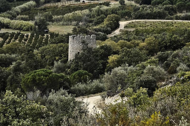 Photo du Monument Historique Ancien monastère Saint-Clément de Régleille situé à Ille-sur-Têt