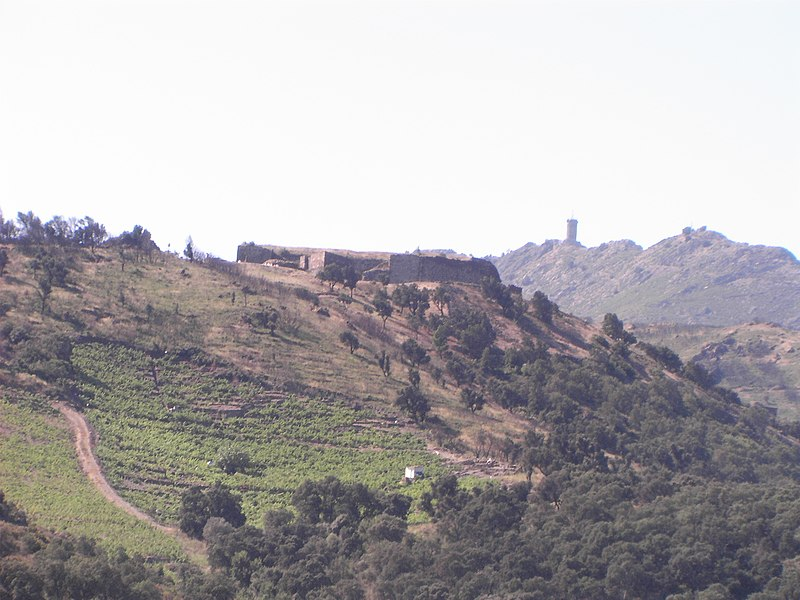 Photo du Monument Historique Fort Dugommier situé à Collioure