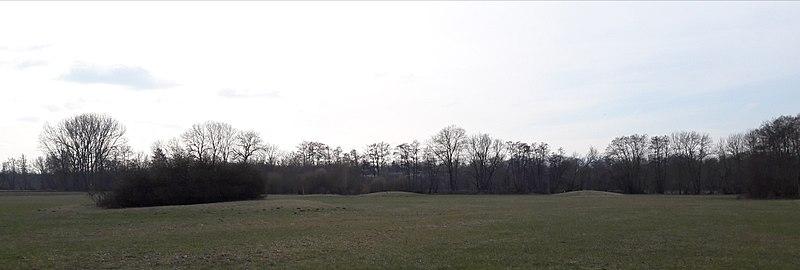 Photo du Monument Historique Nécropole de tumulus protohistorique situé à Mussig