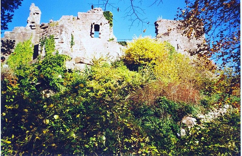 Photo du Monument Historique Ruines du château du Frankenbourg situé à Neubois