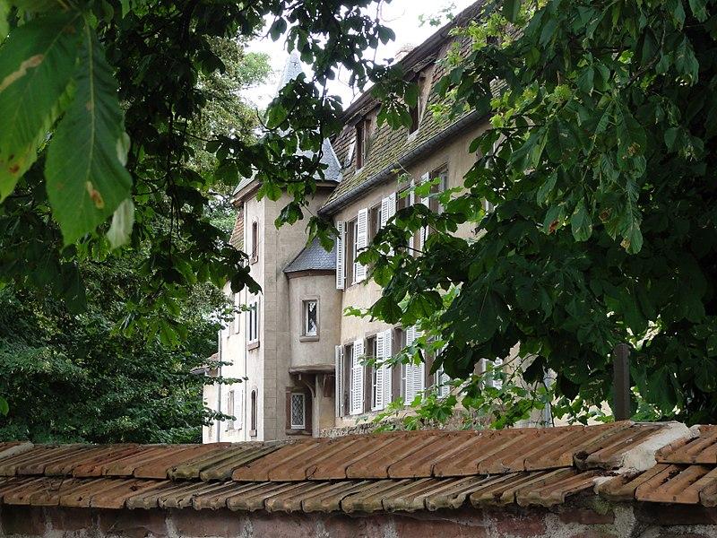 Photo du Monument Historique Château de Grünstein situé à Stotzheim