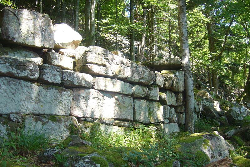Photo du Monument Historique Enceinte protohistorique de la Frankenbourg situé à Neubois
