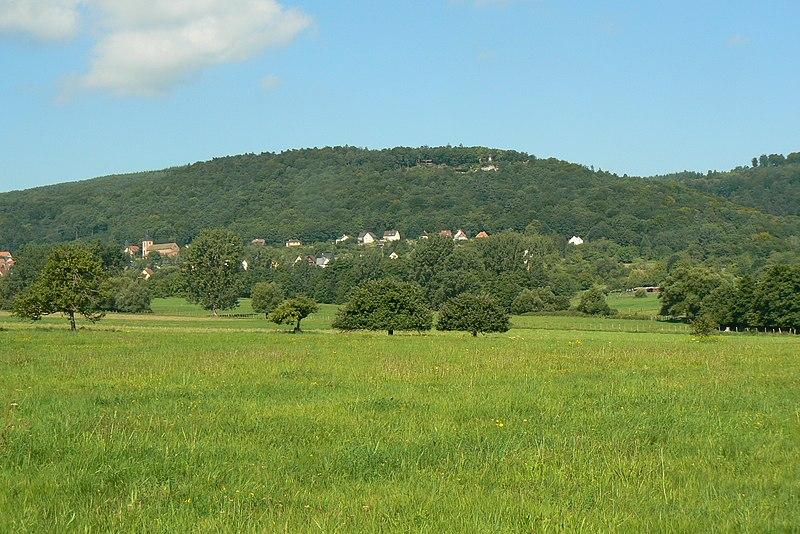 Photo du Monument Historique Site du Mont-Saint-Michel situé à Saint-Jean-Saverne