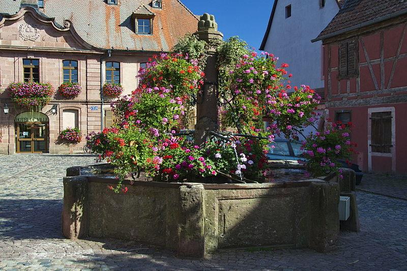 Photo du Monument Historique Fontaine situé à Bergheim