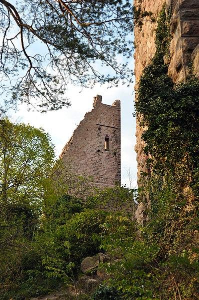 Photo du Monument Historique Ruines du château de Dagsbourg situé à Eguisheim
