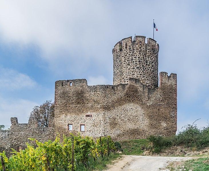 Photo du Monument Historique Château dit Schlossberg et enceinte situé à Kaysersberg