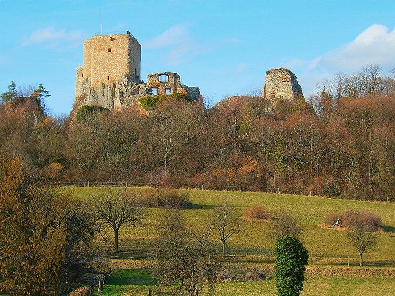 Photo du Monument Historique Ruines du château de Landskron situé à Leymen