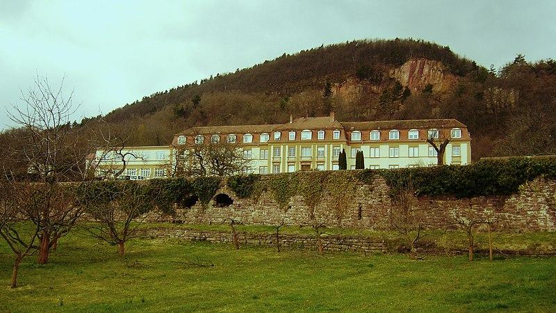 Photo du Monument Historique Ancienne abbaye de Marbach situé à Obermorschwihr ; Eguisheim