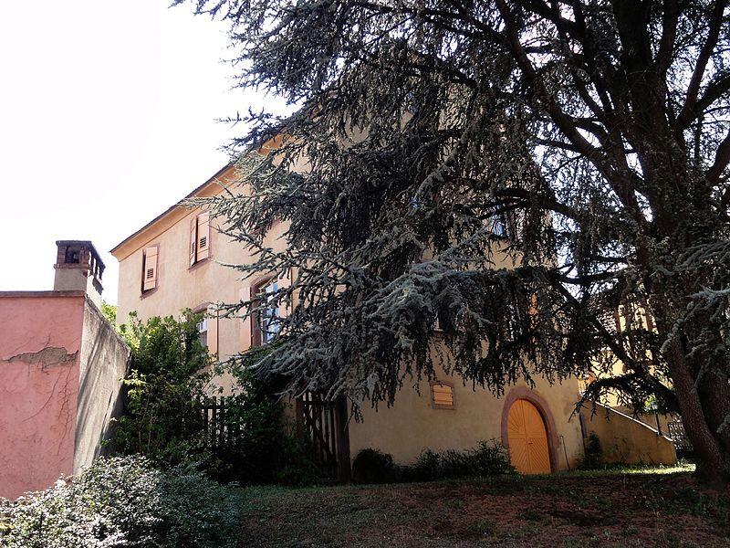 Photo du Monument Historique Ancienne cour noble des Rathsamhausen, dite Schlössle situé à Katzenthal
