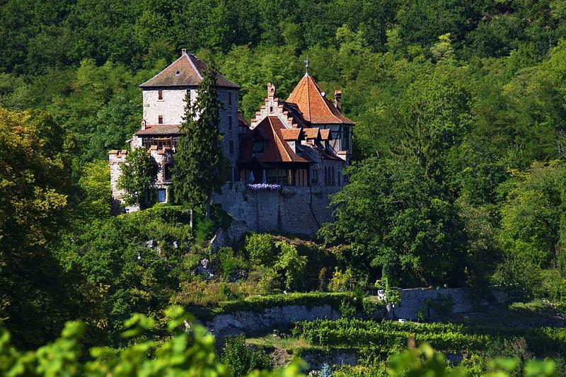 Photo du Monument Historique Château de Reichenberg situé à Bergheim