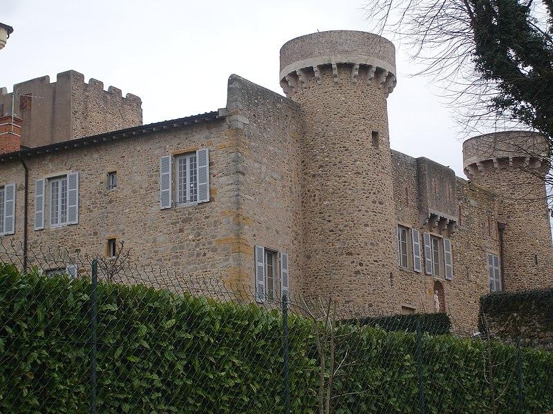 Photo du Monument Historique Château situé à Charly
