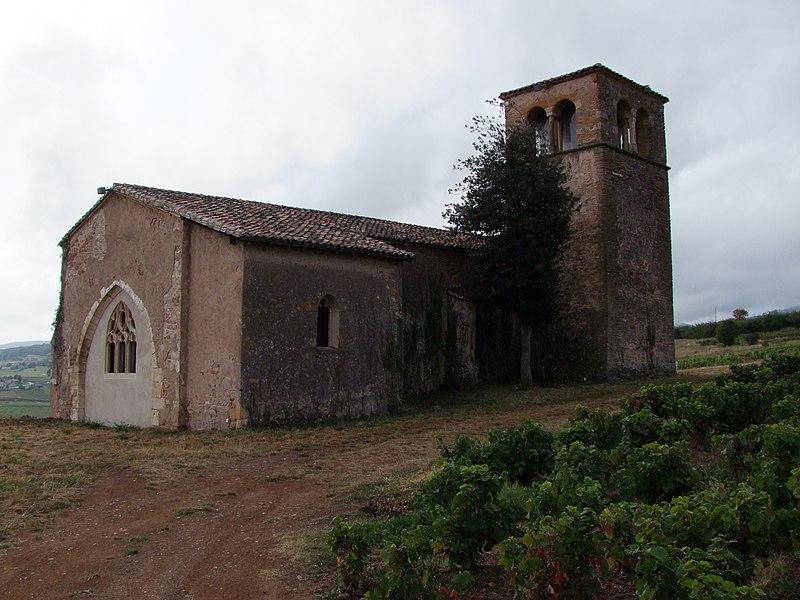 Photo du Monument Historique Chapelle de Chevènes situé à Denicé