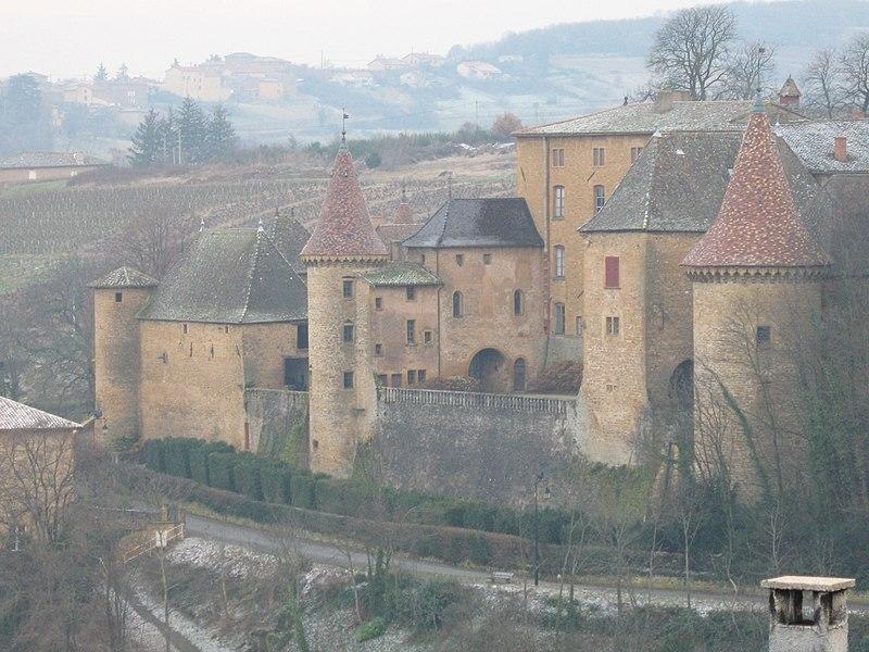 Photo du Monument Historique Château situé à Jarnioux