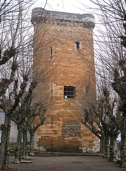 Photo du Monument Historique Tour des Valois (ruines) situé à Sainte-Colombe