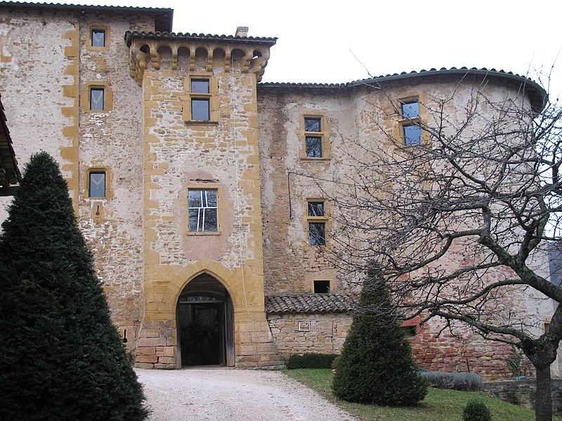 Photo du Monument Historique Château de Rapetour situé à Theizé