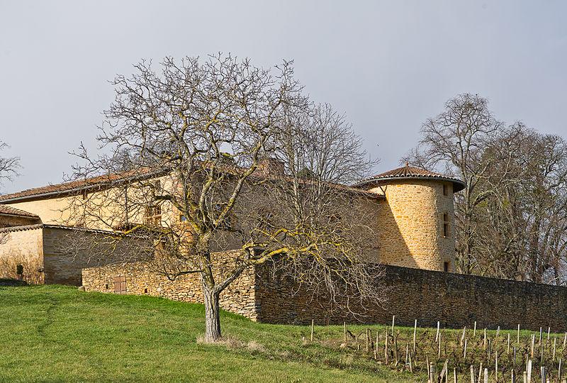 Photo du Monument Historique Manoir d'Epeisse situé à Cogny