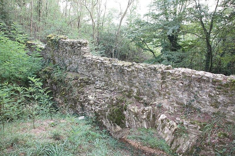 Photo du Monument Historique Pont-aqueduc dit le Pont de Jurieux (vestiges) situé à Saint-Maurice-sur-Dargoire