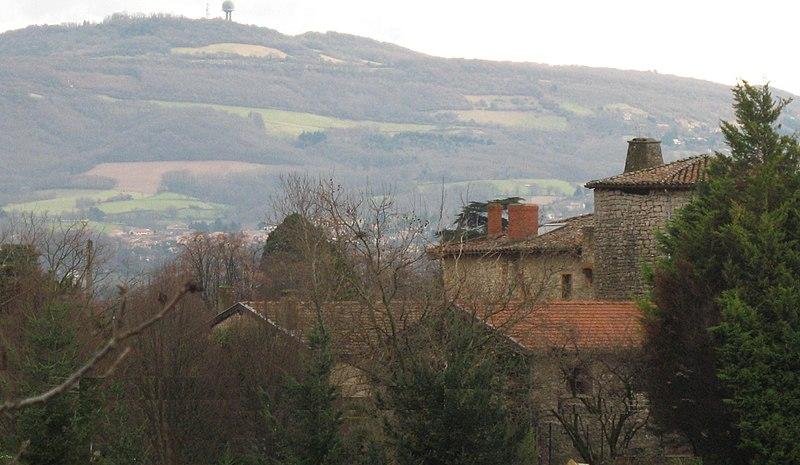 Photo du Monument Historique Maison-forte du Pin situé à Morancé