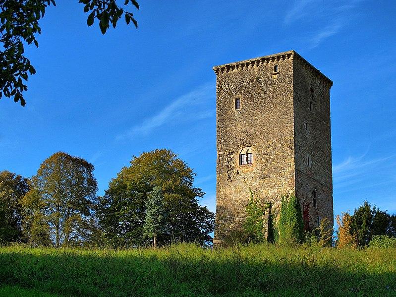 Photo du Monument Historique Château situé à Beaujeu-Saint-Vallier-Pierrejux-et-Quitteur