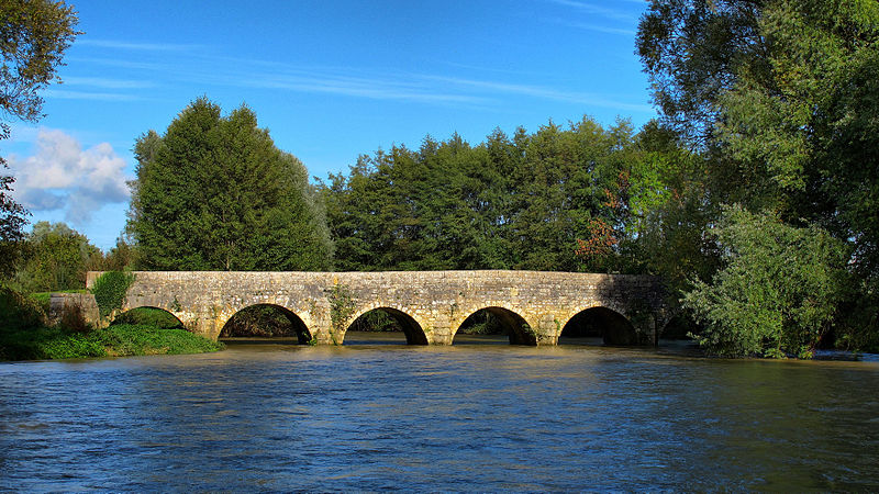Photo du Monument Historique Pont sur le Salon situé à Montot