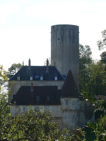 Photo du Monument Historique Château situé à Rupt-sur-Saône