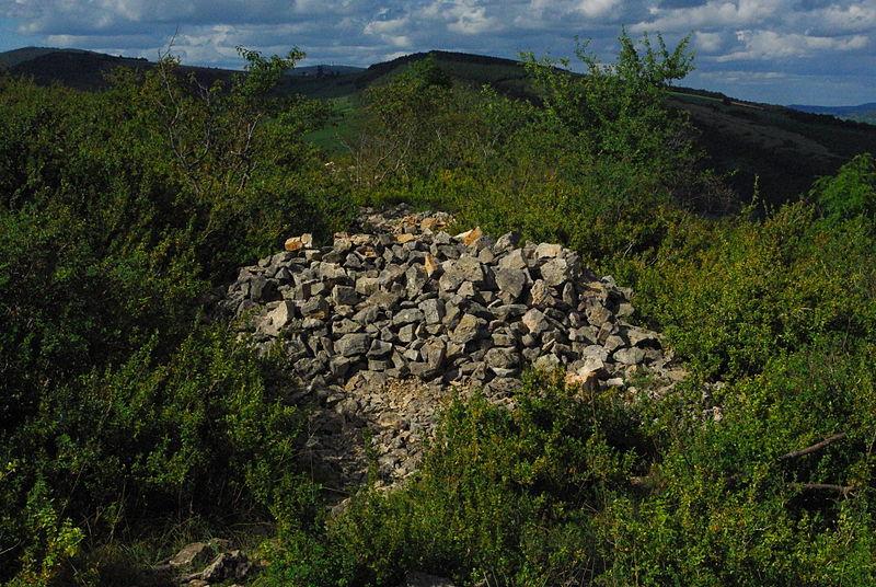 Photo du Monument Historique Camp retranché à éperon barré situé à Bussières