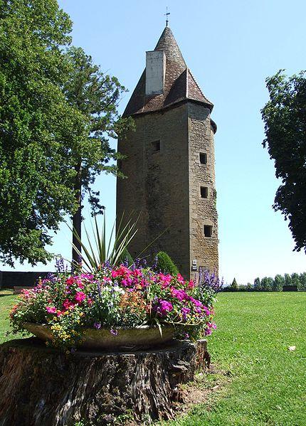 Photo du Monument Historique Château de Charles-Le-Téméraire situé à Charolles