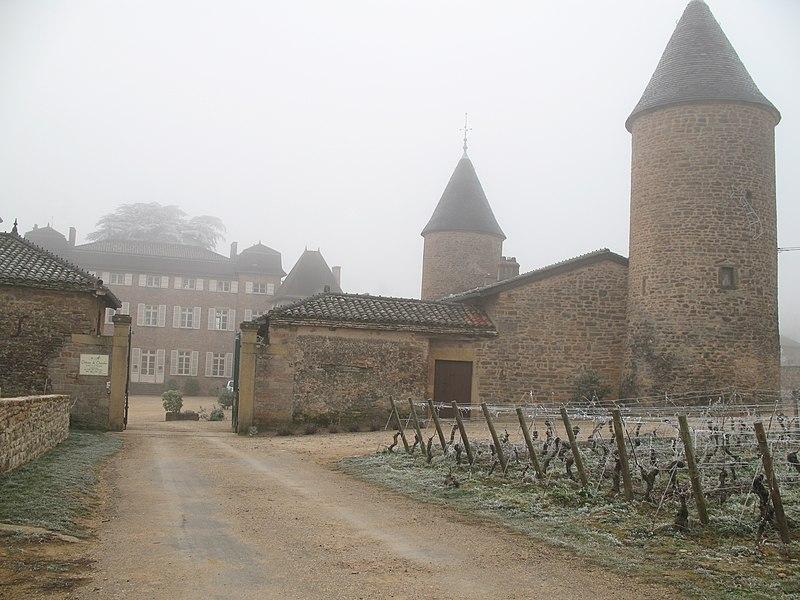 Photo du Monument Historique Château situé à Chasselas