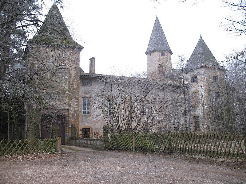 Photo du Monument Historique Château d'Estours situé à Crêches-sur-Saône