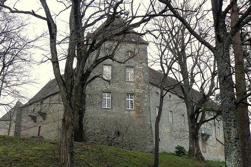 Photo du Monument Historique Château de Brandon situé à Saint-Pierre-de-Varennes
