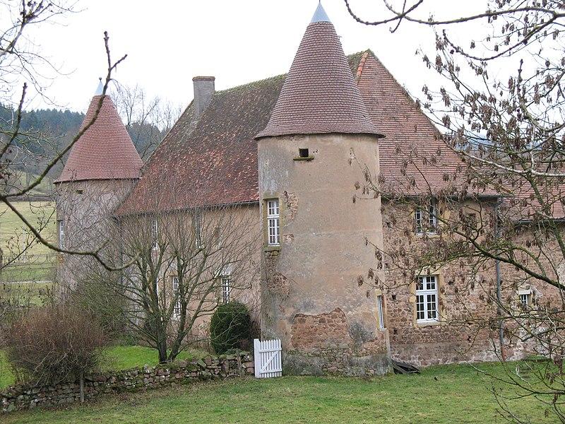 Photo du Monument Historique Château de Chevannes situé à Saint-Racho