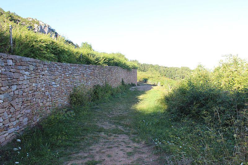 Photo du Monument Historique Gisement préhistorique situé à Solutré-Pouilly