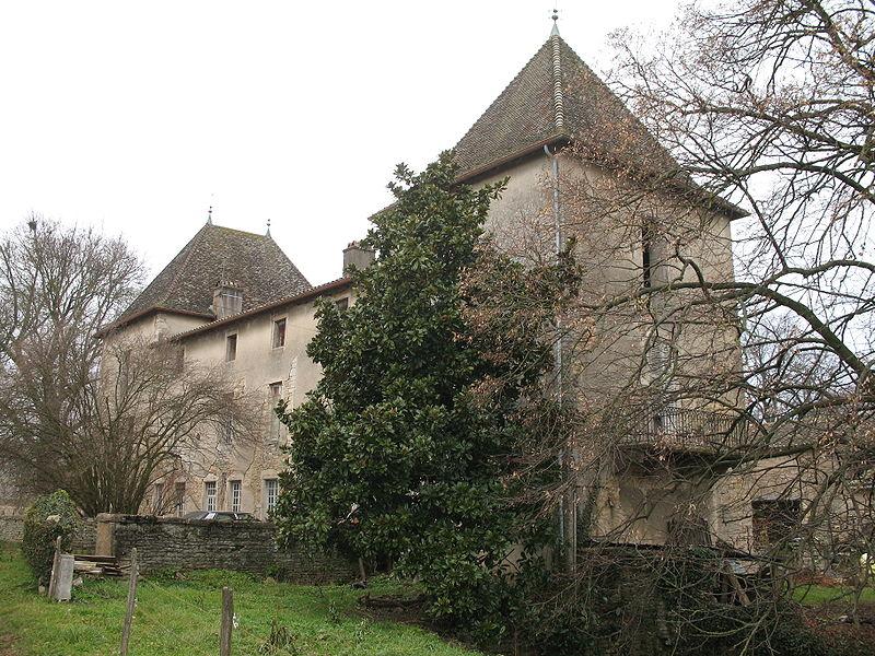 Photo du Monument Historique Château de Grenaud situé à Uchizy